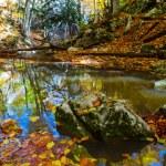 Autumn mountain river scene — Stock Photo #77267660