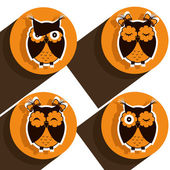 Four icons with brown owls — Stock Vector