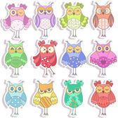 Set of multicolored, beautiful owls — Stock Vector