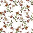 Seamless background with flowers and birds on a white background — Stok Vektör #81050158