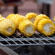 Cob grilling  — Stock Photo #53676575