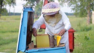 Beekeeper working — Stock Video