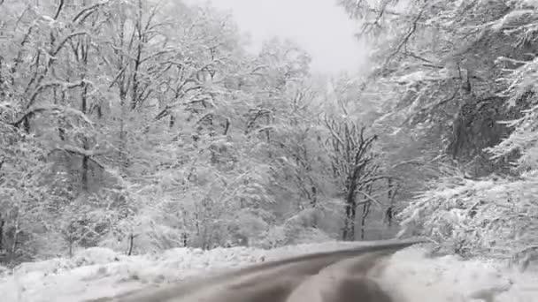 Camino de invierno cubierto de nieve — Vídeo de stock