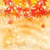 Maple herfstbladeren achtergrond — Stockvector