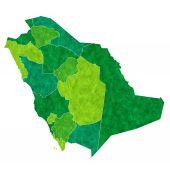 Saudi Arabia map country — Stock Vector