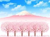 Cherry Fuji background — Stock Vector