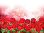 玫瑰花朵背景 — 图库矢量图片