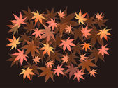 Maple foliage background — Stock Vector