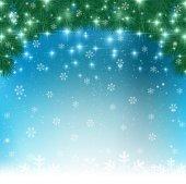 Christmas fir tree background — Stock Vector