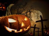 Halloween concept — Stock Photo