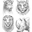 Set of safari head animals, black and white sketch drawing — Stock Vector #54757489