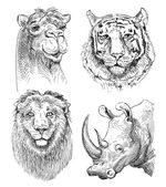 Set of safari head animals, black and white sketch drawing — Vetorial Stock