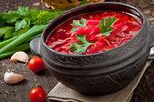 Traditional Ukrainian vegetable borsch — Φωτογραφία Αρχείου
