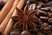 Anise, cinnamon and coffee beans — Stock Photo