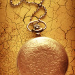 Golden pocket watch with chain — Stock Photo #63455451