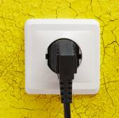 Wall plug socket — Stock Photo