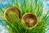 Compass on fresh green grass — Stock Photo