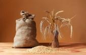 Grains of wheat, jute bag and ceramic vase — Stock Photo