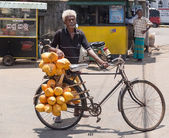 Elderly local man selling king coconuts on his bike — Stock Photo