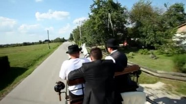 Men sitting on horse drawn carriage — Stock video