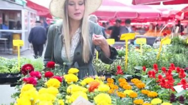 Woman holding flower in the market — Stock Video