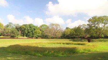 Nature in Sigiriya — Vídeo stock