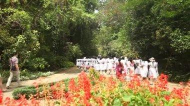 在植物园的女学生 — 图库视频影像
