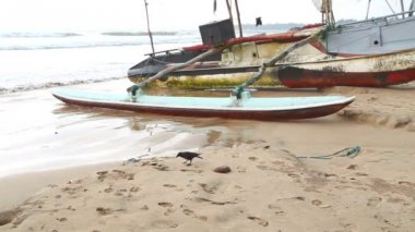 Boat on the beach in Weligama — Stock Video