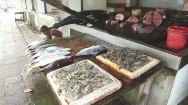 Fish displayed at a local fishmonger — Stock Video
