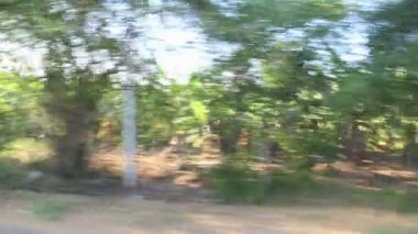 Time lapse view of a landscape from a moving bus. — Stockvideo