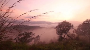 туманный восход солнца на пике небольшого adam — Стоковое видео