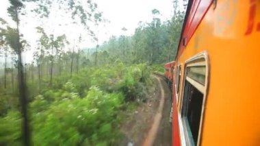 Nuwara Eliya landscape from the train — Stock Video
