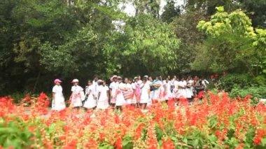 Schoolmeisjes in de botanische tuinen — Stockvideo