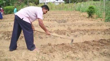 Hombre trabajando en un terreno en Ella — Vídeo de Stock