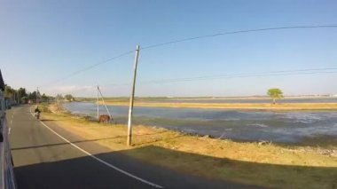 Sri lankan landscape from moving vehicle. — Стоковое видео
