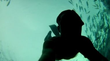 Person swimming among fish — Stockvideo