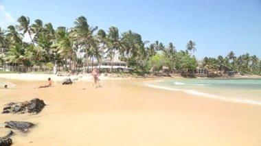 Beautiful sandy beach in Sri Lanka — Stock video