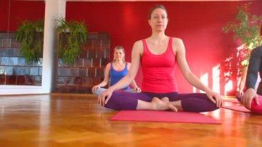 Women doing yoga on rubber mats — Stock Video