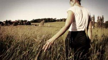 Woman walking touching long grass — Vídeo stock