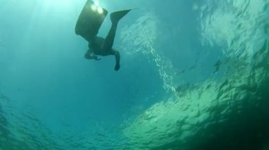 Free diver swimming underwater — Stock Video