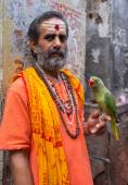Indian man holds parrot — Stock Photo