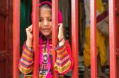 Little girl looks through fence — Stock Photo