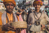 Indian boys hold cobras — Stock Photo