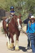 A Horse Ride at Old Tucson, Tucson, Arizona — Stock Photo