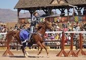 A Joust Tournament at the Arizona Renaissance Festival — Stock Photo