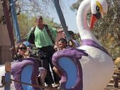 A Swan Ride at the Arizona Renaissance Festival — Stock Photo