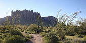 A Trail into the Superstition Mountain Wilderness — Stock fotografie