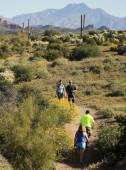 A Trail into the Superstition Mountain Wilderness — Stock Photo