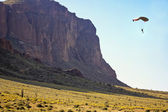 A Paraglide Off Flatiron in the Superstition Mountain Wilderness — Foto de Stock