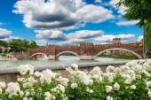 Adige river, medieval bridge Ponte Scaligero in Verona — Stock Photo